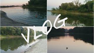 VLOG: танцующий бобёр, нюхаем ёжика(Видео-влог о том, как мы провели один летний вечер в компании друзей. Вечернее купание, наслаждение природой..., 2015-08-07T15:23:12.000Z)