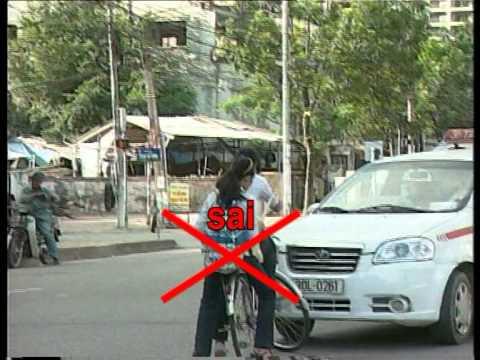 Hướng dẫn Luật giao thông đường bộ 2008