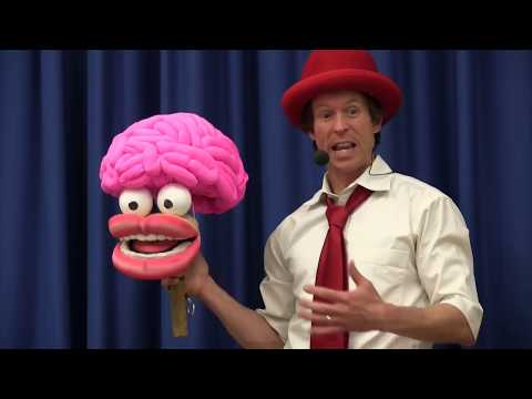 Tim Holland: Brainshow