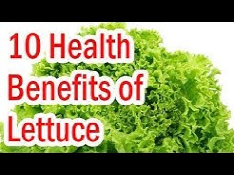 Top 10 Best Health Benefits Of Lettuce Benefits Of Salad By Health Tv Youtube