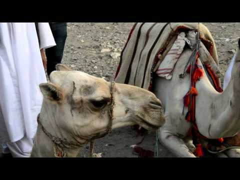 3 Minutes of Egypt   YouTravel - Egitto