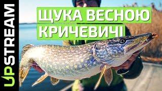 Щука весною на озері Кричевичі