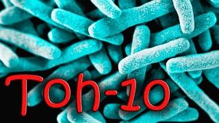 видео Ацидофильные пробиотики Nutrition Now PB8 с iherb