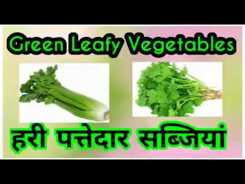 Green Leafy Vegetables Names#पत्तेदार सब्जियों के नाम