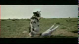 La Vaca - Mala Fe
