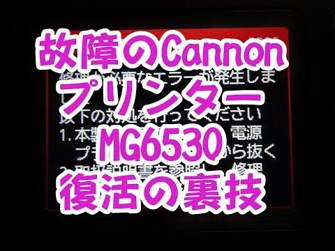故障したCannonプリンターMG6530を復活の裏技動画!!