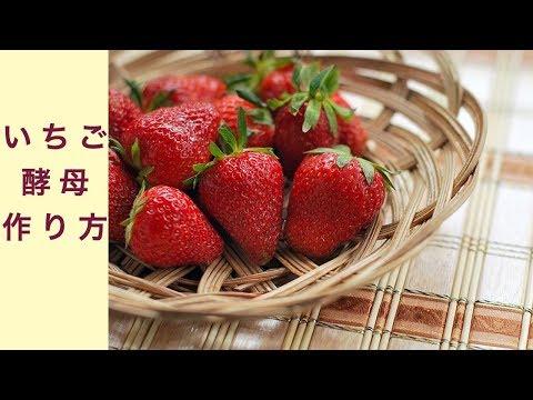 いちご酵母 作り方 フルーツ酵母 自家製天然酵母 パン教室 大阪 奈良 東京 福岡 名古屋
