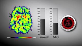 El alza y la baja de la euforia causada por la cocaína