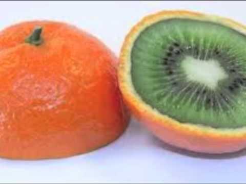 """Little GMO"""