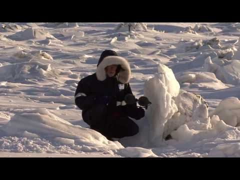 "Making of ""The Qikiqtaaluk Deep Map"" (2014)"
