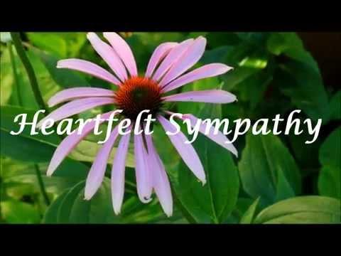 Heartfelt Sympathy Ecard