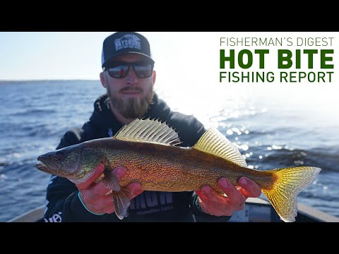 Hot Bite Fishing Report - Oct 23rd