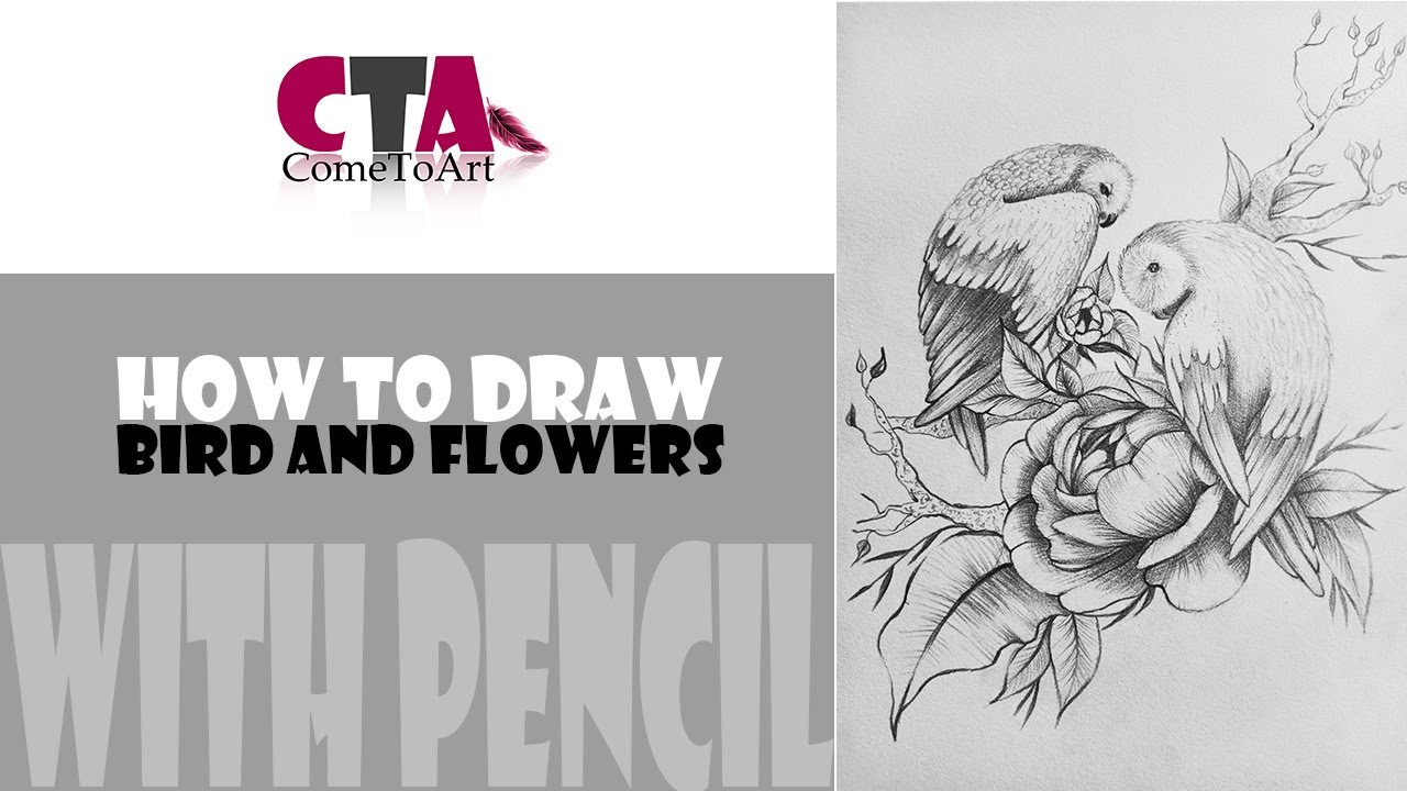 CÁCH VẼ CHIM VÀ HOA LÁ BẰNG BÚT CHÌ 02 – HOW TO DRAW BIRD AND FLOWERS WITH PENCIL ART