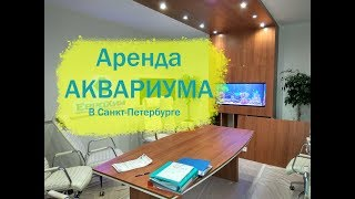 Аренда аквариума в Санкт-Петербурге. Компания АкваЗоо СПб.
