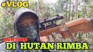 Gambar cover #VLOG HUNTING DI HUTAN RIMBA