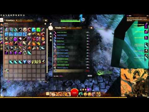 guild wars 2 elementalist pve leveling guide