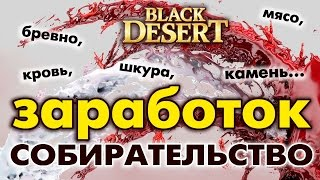 Black Desert (RU) - Бандиты Кахаза (споты в Валенсии) Заработок серебра / Прокачка
