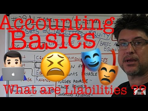 Accounting for Beginners #29 / Liabilities / What are Liabilities / Accounting 101