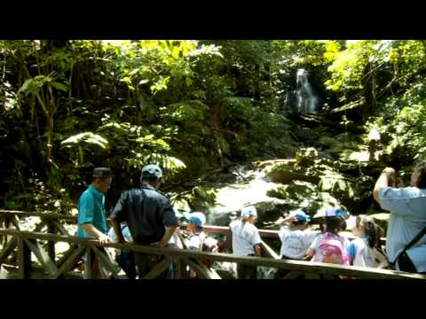 Sabah's Natural Resources - Conservation Policies & Plan (Part 2/2)