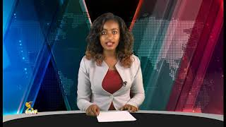 ESAT Addis Ababa Amharic News Feb 12, 2019