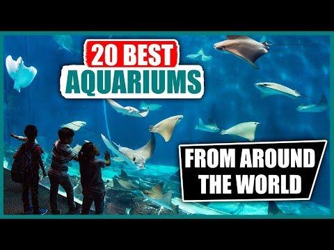 20 Best Aquariums from around the World
