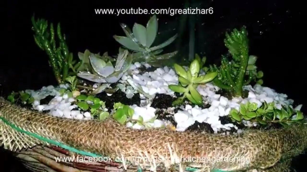 How to make a dish garden arrangement succulent plants garden how to make a dish garden arrangement succulent plants garden ideas muft ka idea workwithnaturefo