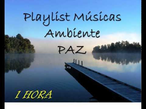 Playlist Background Music Músicas Instrumental Ambiente Paz Harmonia Estudo Trabalho Concentração
