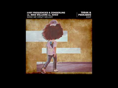 Lost Frequencies vs. Mike Williams vs. Avicii - Wake Me Crazy Melody (TOSAK & Peekaboo Edit)