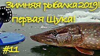 Первая в жизни щука на жерлицу Зимняя рыбалка на озере по первому льду 2019 20