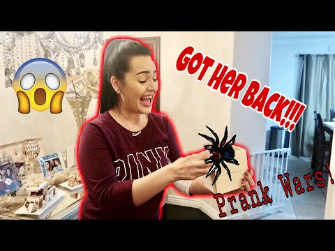 TERRIFYING SPIDER PRANK ON WIFE!!!