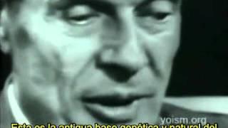 El conflicto inherente del ser humano - Aldous Huxley