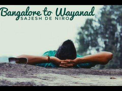 Dominar 400 || Bangalore To Wayanad Ride || Bandipur National Park || Wild Animals