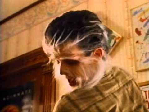 Shaggy dog transformations (1994)