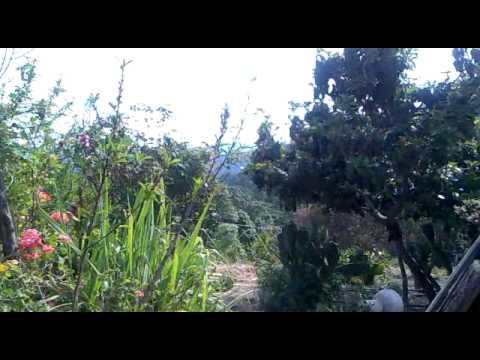 LAS MESAS SULTEPEC ESTADO DE MEXICO ABRIL 2010