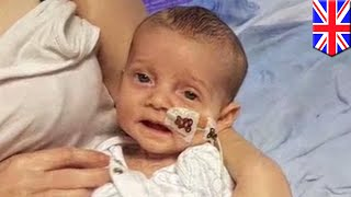 Charlie Gard: experimental therapy has 10% chance of improving his condition, doc says - TomoNews