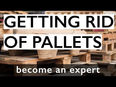 We Buy Pallets | Gruber Pallets Inc