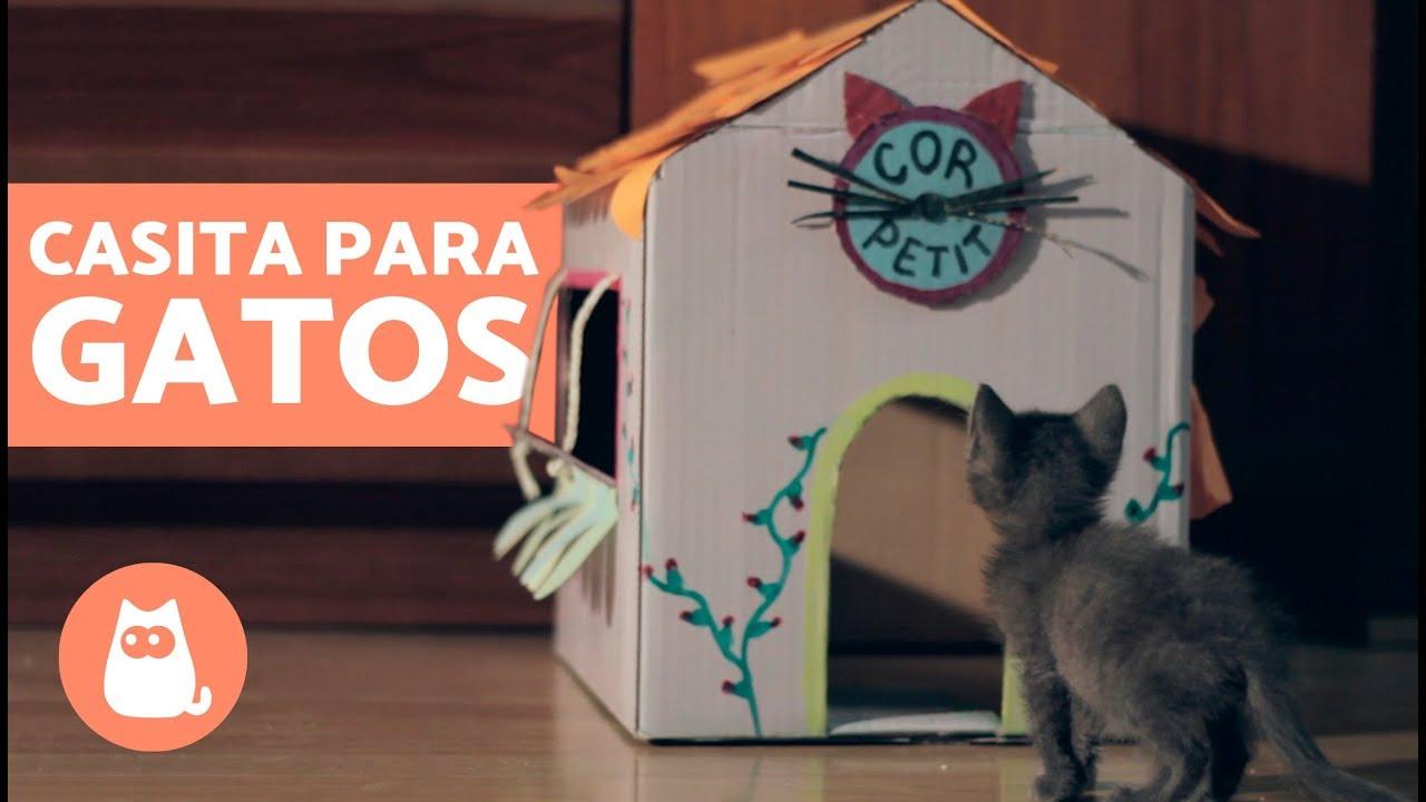 Casa Para Gatos Casera Casita De Carton Para Gatos Youtube