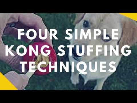 Four Simple Ways to Stuff A Kong So It Lasts