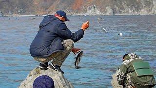 Рыбалка в Приморье. Морская рыбалка. Бухта Прозрачная. Минтай. 24.04.2019 г.