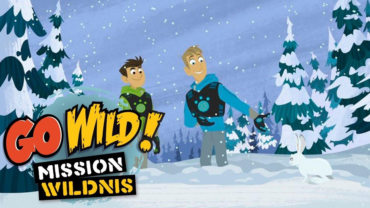 Go Wild Mission Wildnis Borstenkaninchen Im Schnee Folge 20 By