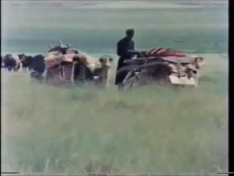 Mongolia - on the Edge of the Gobi