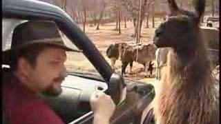 """Oklahoma Rocks!"" Video Journal #3"