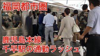【福岡都市圏】JR鹿児島本線千早駅の通勤ラッシュ