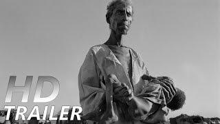DAS SALZ DER ERDE | Trailer [HD]