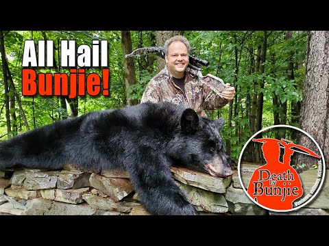 Bunjie's First Bear! CROSSBOW Bear Hunt!