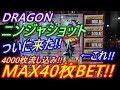 【メダルゲーム】DRAGON ニンジャショット MAX40枚BET!! 4000枚流し込み!! ついに!! この日がやってきた!!(2018.12.09)