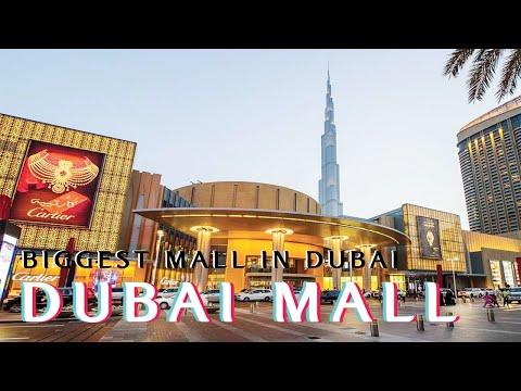 biggest Mall In Dubai   The Dubai Mall   Dubai Aquarium   Dubai Fountain   4k
