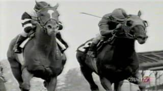 The Fall of Calumet Farm and the Death of Alydar