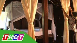 Dịch vụ lưu trú làng Hòa An xưa phục vụ khách từ 13/12 | THDT