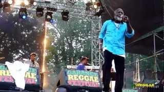 """FREDDIE MCGREGOR """"Africa Here I Come~Medley"""" Garance Reggae Festival, France 2012"""